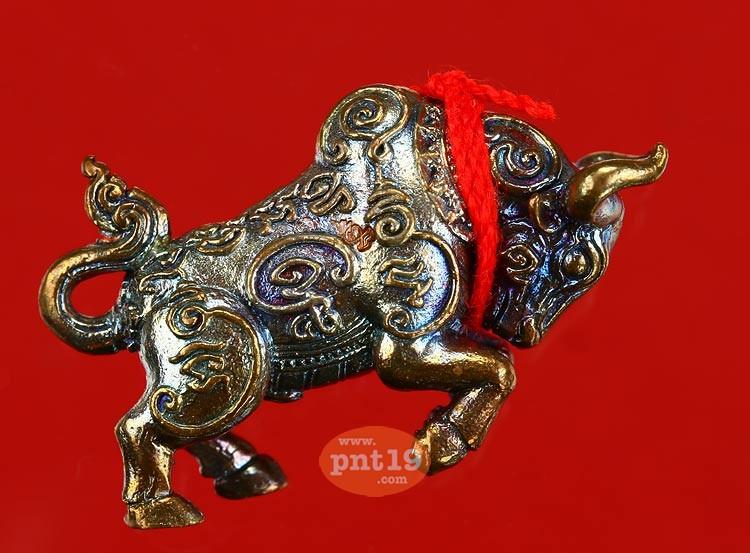 วัวตัวครู ผูกเชือกแดง 3 โค้ด เนื้อสัตตะโลหะ หลวงพ่อสุพจน์ วัดศรีทรงธรรม