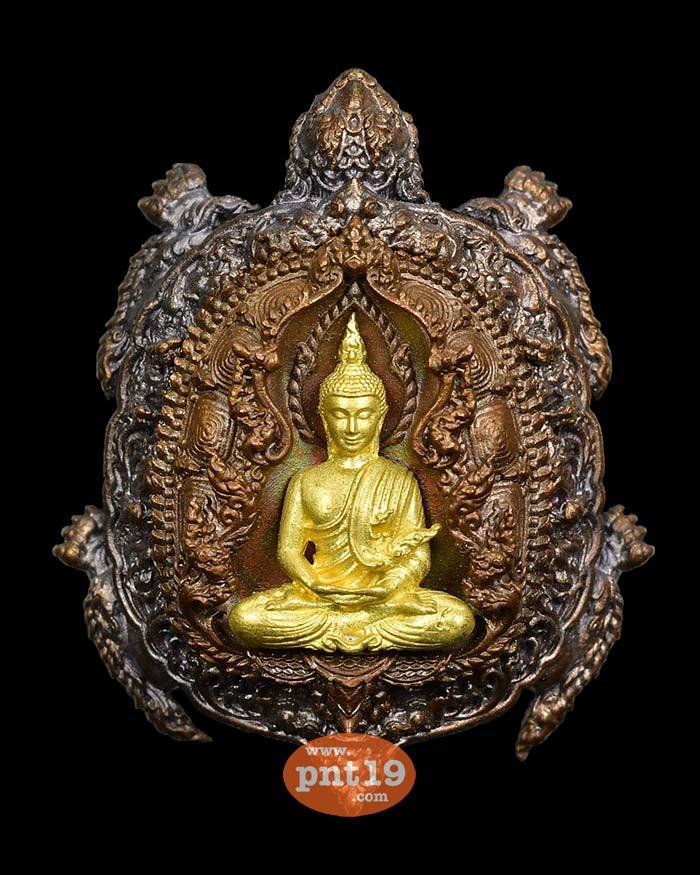 เหรียญหล่อพญาเต่าเรือนเสวยชาติ (3.5 ซ.ม.) 12. ทองแดงเถื่อน-องค์ทอง วัดถ้ำเขาชะอางค์