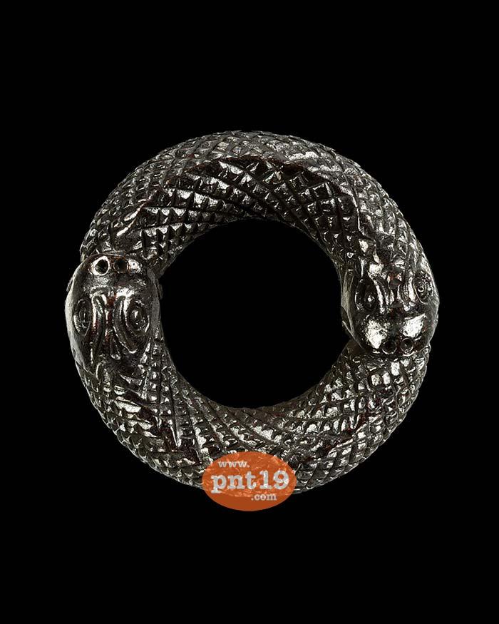 งูกินงู ทองแดง หลวงพ่อธร วัดตาลกง