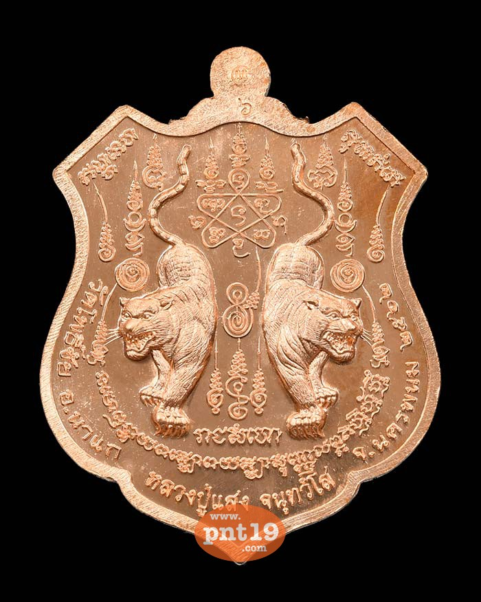 เหรียญพยัคฆ์ ๕ แผ่นดิน ทองแดงผิวไฟลงยาขาว หลวงปู่แสง วัดโพธิ์ชัย