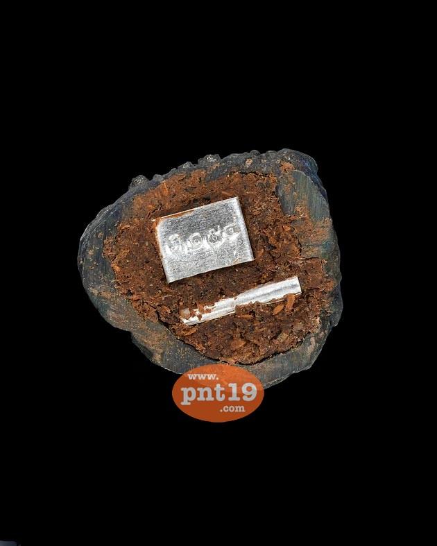 ปู่เสือแสนเฮง เนื้อลูกแก้วสารพัดนึก (อุดผงพุทธคุณ) หลวงปู่แสน วัดบ้านหนองจิก