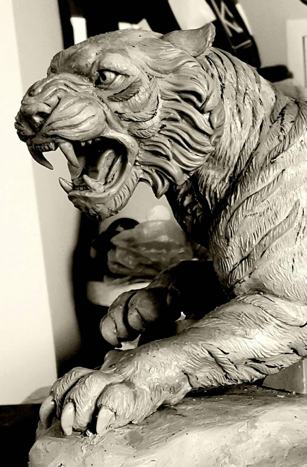 รุ่น เสือ มหาอำนาจ พ่อท่านผ่อง วัดแจ้ง